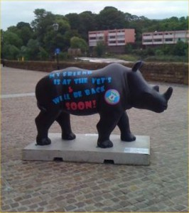 One of the replacement Rhino's near the Salmon Leap in Chester.