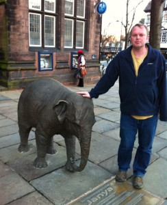 Little Elephant statue in Chester Town Centre