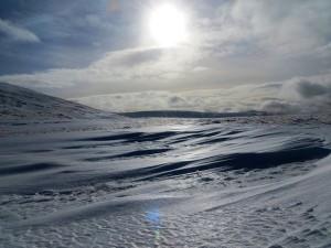 cdwg_snow2