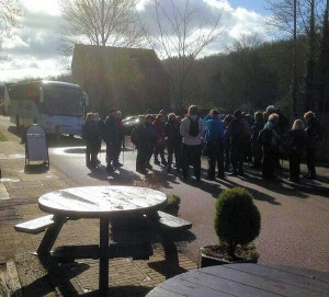 Toffee nosed walkers arriving by coach