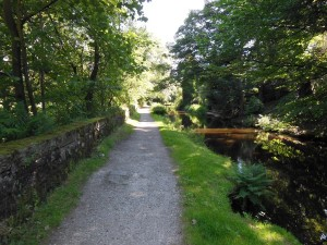 The path to Uppermill along the Canal