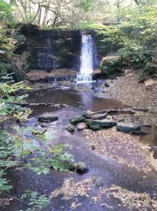 A nice waterfall
