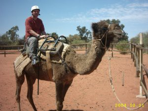 me_camel