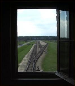 Birkenau window