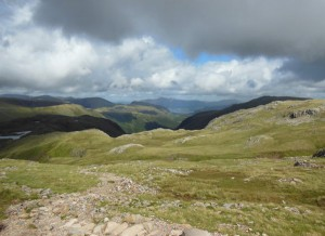 On Scafell hillside