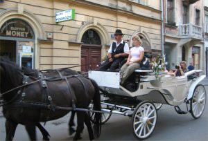 Horse & Cart