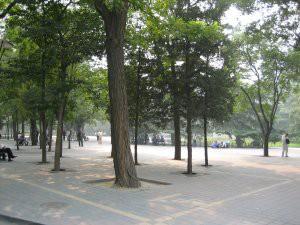localspark