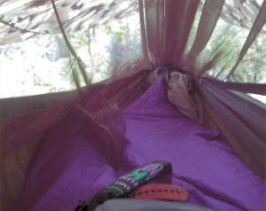 hammock4