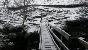 spfootbridge