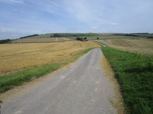 A long open road with fields on each side