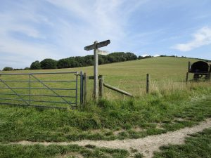 A signpost on the South Downs way