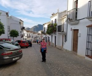 One of Andalucia's white villages