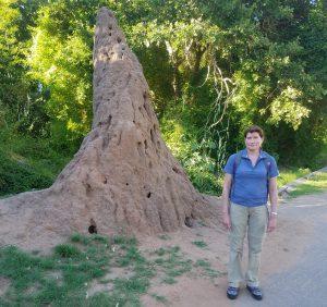 Nikki standing next to a giant termite nest