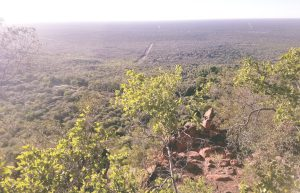 The view from the Waterberg Plateu