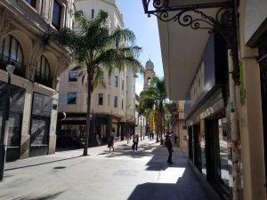 palmtree_street